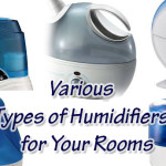 What Are The Various Types Of Humidifiers Available To Buy?