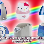 How Should I Select The Best Humidifier in the Market?