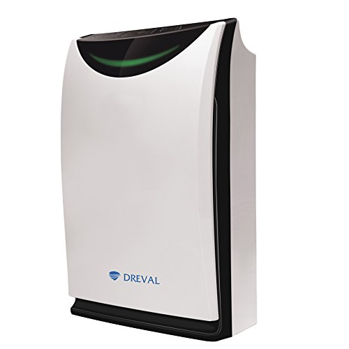 This best air purifier humidifier combo comes from the trusted brand name  Dreval  This gadget has a high efficiency HEPA filter which eliminates  99 97  of. 5 Best Air Purifier And Humidifier Combo Reviews