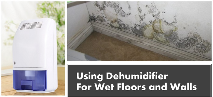 Using Dehumidifier For Wet Floors and Walls